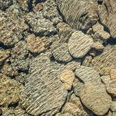 picture of trough  - Some rock in a natural pool in tasmania the surface of the water created a nice pattern when the light shines trough - JPG