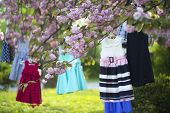picture of black-cherry  - Baby colorful dresses red blue white black colors on hangers hanging on the pink japanese cherry blossoms tree in broad daylight in the garden horizontal picture - JPG