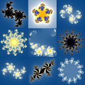 pic of mandelbrot  - Set of fractal floral patterns textures or backgrounds - JPG