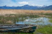Fishing Boat In The Reeds At Lake Prespa poster