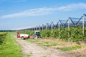 picture of pesticide  - Agricultural work - JPG