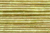 picture of lichenes  - Horizontal bamboo sticks tight together - JPG