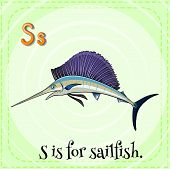 image of sailfish  - Flashcard letter S is for sailfish with green background - JPG