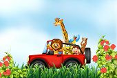 picture of car ride  - Animals riding a car in the park - JPG