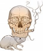 image of rats  - image of a skull with fuming cigar and a rat - JPG