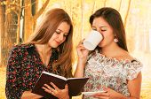 picture of bff  - Two beautiful young college girls over fall autumn background - JPG