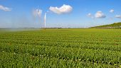 picture of cannon  - Water cannon irrigating a field with tulips in spring - JPG