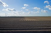picture of plowed field  - Plowed field with furrows in spring under a blue cloudy sky