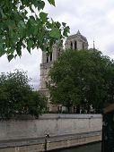 Notre Dame Thru Trees