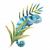 stock photo of chameleon  - Beautiful vector image with nice watercolor chameleon - JPG