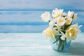 foto of daffodils  - Bright white daffodils and tulips flowers in blue vase on turquoise painted wooden planks against blue wall. Selective focus. Place for text. ** Note: Shallow depth of field - JPG