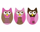 three owls pink and brown