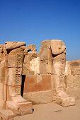 picture of skarabaeus  - ancient karnak temple in luxor in egypt - JPG