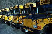 Fleet Of School Buses