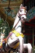 Horse On Merrygoround 1