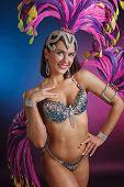 Beautiful Girl In Carnival Costume. poster