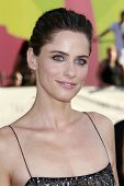LOS ANGELES - JUL 20: Amanda Peet at the 'The X-Files: I Want To Believe' - World Premiere at the Grauman's Chinese Theater in Los Angeles, California on July 23, 2008