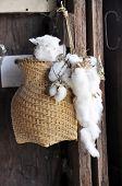 Cotton Creel Brown Old Hang