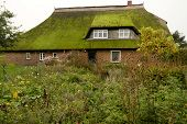 Thatched Roof House On Fischland In Germany poster