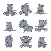 Cute Hippo Set