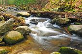 stock photo of abram  - Mountain stream in the the Smoky Mountains near Cades Cove - JPG