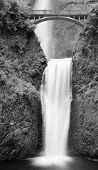 View of lower and upper multnomah falls in Oregon done as black and white image