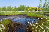 picture of siberia  - Elimination of oil spill accidents - JPG
