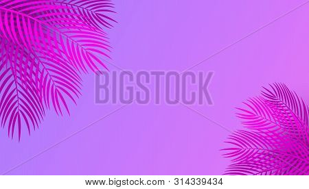 poster of Vector Horizontal Pink Purple Neon Background With Palm Leaves, Copy Space. Tropical Pink Leaves On