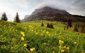 velky (gross) rosutec mount - mala (small) fatra mountains - slovakia