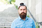 Facial Hair Treatment. Hipster With Beard Brutal Guy. Fashion Trend Beard Grooming. Brutality And Be poster