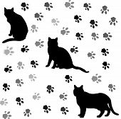 Background With Cats Silhouettes And Tracks 2