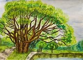 picture of hand drawn  - Hand painted picture watercolours  - JPG