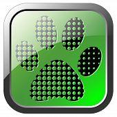 Animal footprint icon on green button