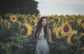 Field Of Sunflowers In Sunlight. Girl, On The Field Of Sunflowers. Happy Young Woman Walking In Fres poster
