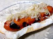 picture of hot dogs  - Hot dog an sauerkraut on bun - JPG