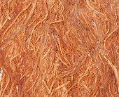 Gugo bark texture