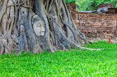 Famous Buddha Head With Banyan Tree Root At Wat Mahathat Temple In Ayutthaya Historical Park, Ancien poster
