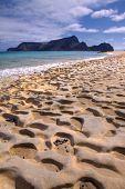 Fóssil areia da praia