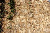 Sandstone  walls.