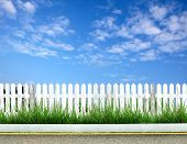 white fence with grass and blue sky