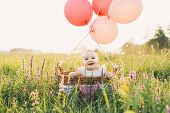 Baby Girl In Wicker Basket With Balloons On Nature At Summer poster