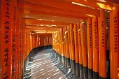 Fushimi Inari Shrine at Kyoto