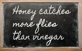 Expression -  Honey Catches More Flies Than Vinegar - Written On A School Blackboard With Chalk