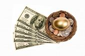 Golden Nest Egg With Lots Of Money Isolated