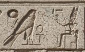 pic of hieroglyph  - Ancient Egyptian hieroglyphic carvings on a temple wall at Karnak in Luxor - JPG