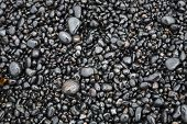 Wet Sea Pebbles On A Beach Close Up