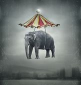 Fantasie-Elefant