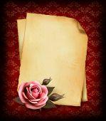 Fondo vintage con hermoso rosa rosa y viejo papel. Ilustración del vector.