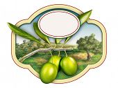 Olive oil label with a beautiful country landscape. Digital illustration, copy-space available, clipping path included.