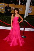 LOS ANGELES - JAN 27:  Lea Michele arrives at the 2013 Screen Actor's Guild Awards at the Shrine Aud